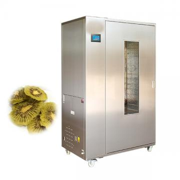 Multi-Level Belt Drying Machine for Fruit and Vegetable Dehydration