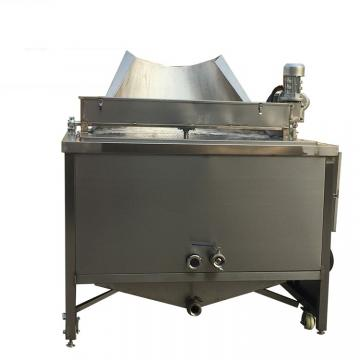 20 Litre Commercial Fryer