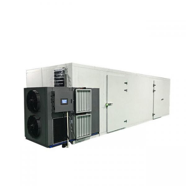 Fruit and Vegetable Washing and Air Drying Machine for Date